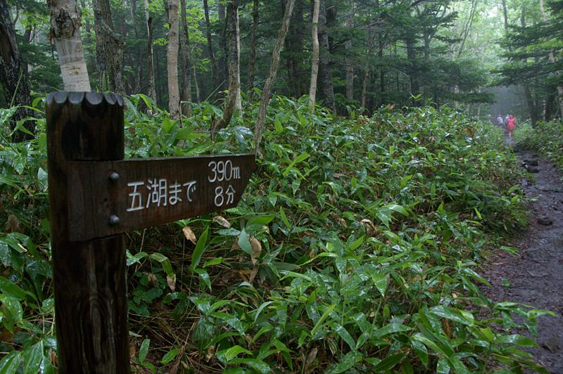 知床五湖-07