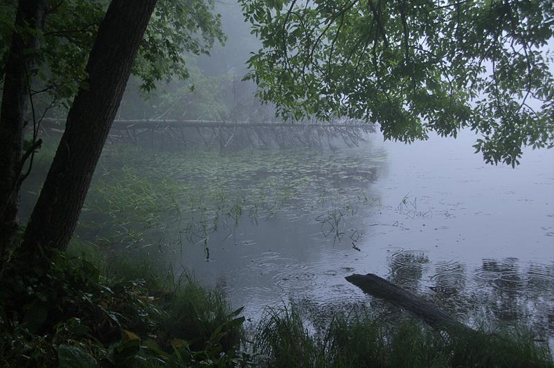 知床五湖-34