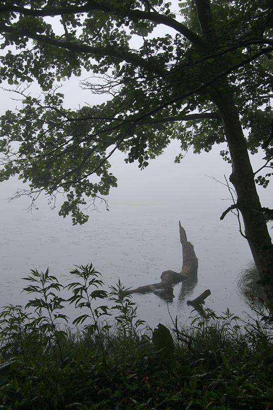 知床五湖-40