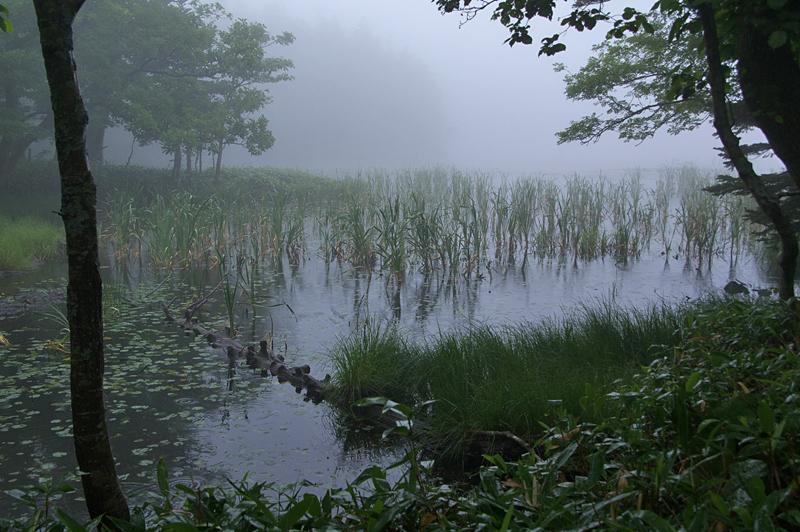 知床五湖-55