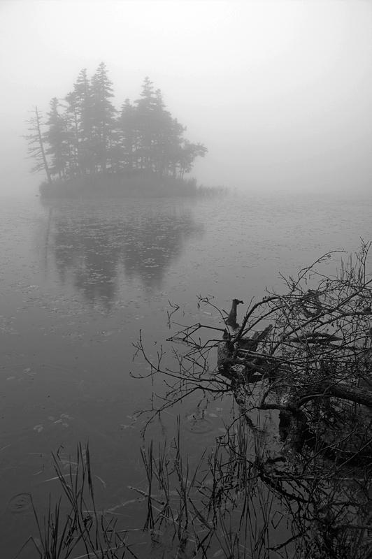 知床五湖-70
