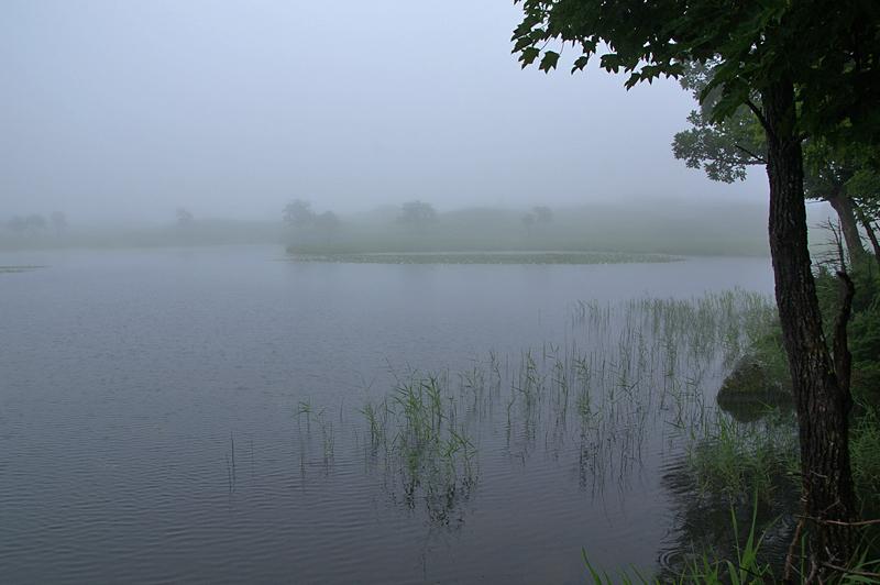 知床五湖-83