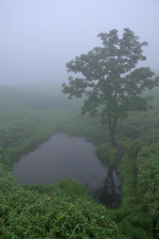 知床五湖-94