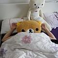 ....表姊被懶熊壓住了