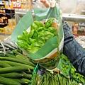 邊種邊吃的香料盆栽!!