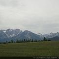 遠方的山就是阿爾卑斯山!!! 山頭還有雪還沒融,雖然已經是夏季了