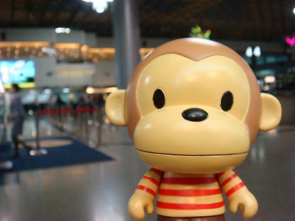 2010/3/14 凱凱猴@桃園中正機場