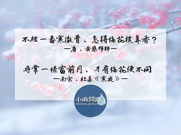 好歌分享|許茹芸 《梅花》| 宋朝.王安石|小雨問路