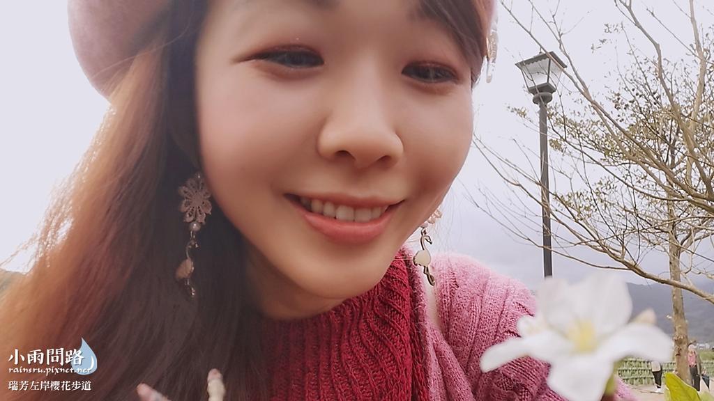 新北瑞芳|賞櫻新景點|瑞芳左岸櫻花步道|沿著河畔賞粉櫻、桃櫻、白櫻 (18).PNG