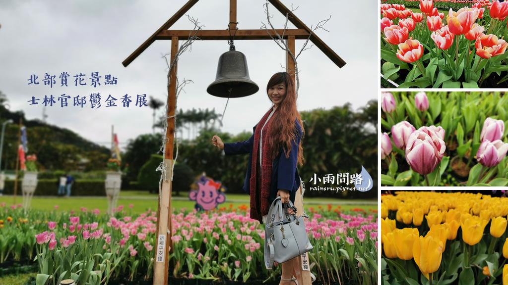 北部賞花景點|2021士林官邸鬱金香展|各色鬱金香花語|特寫花照分享 (1).PNG