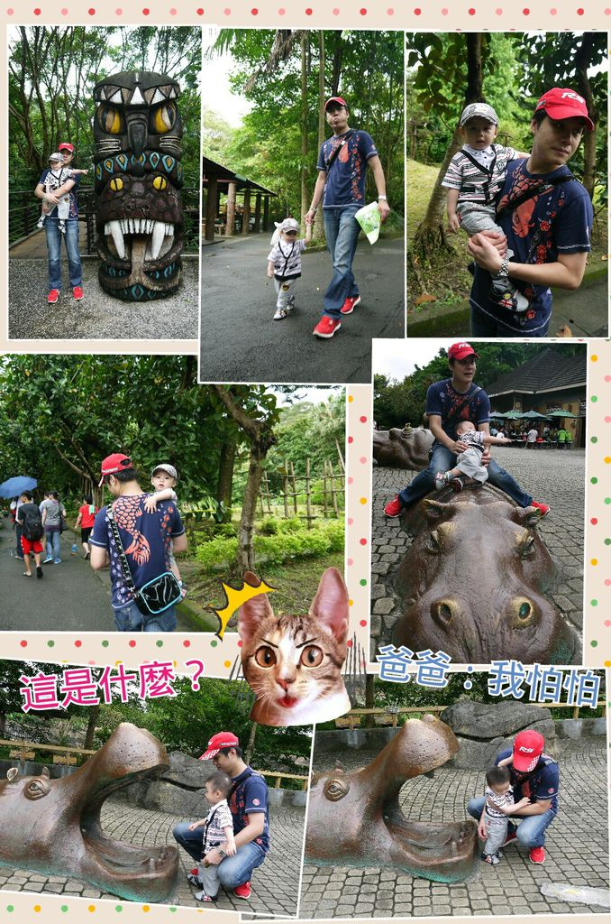 Collage 2014-06-11 19_22_37
