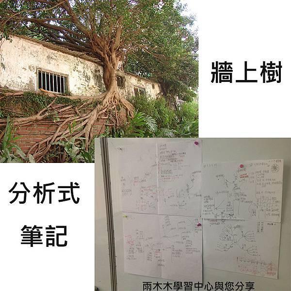 牆上樹與分析式筆記