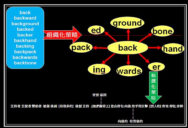 利用組織化策略與精緻化策略來背單字