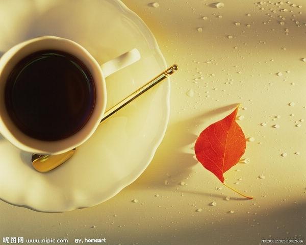 咖啡與紅葉
