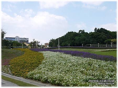 001-花海