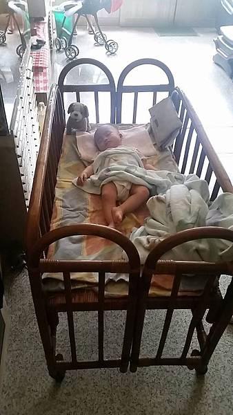 1030613棠睡廷的床.jpg