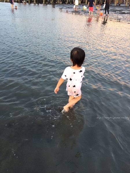 20160619大安海水浴場_1806.jpg
