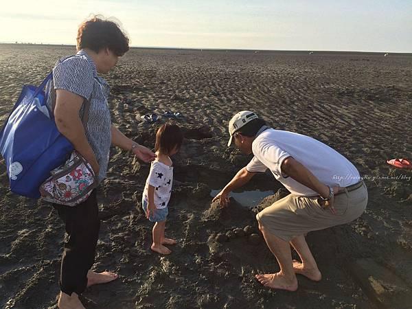 20160619大安海水浴場_3282.jpg