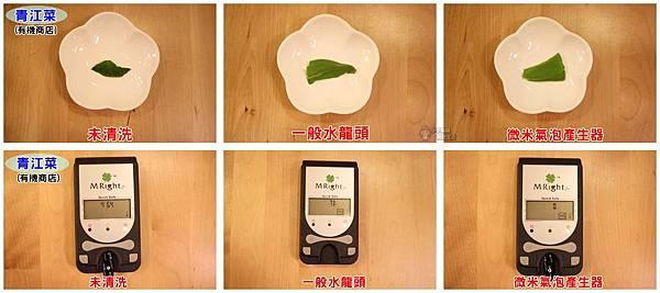 IMG_1572-青江菜有機店1-vert.jpg