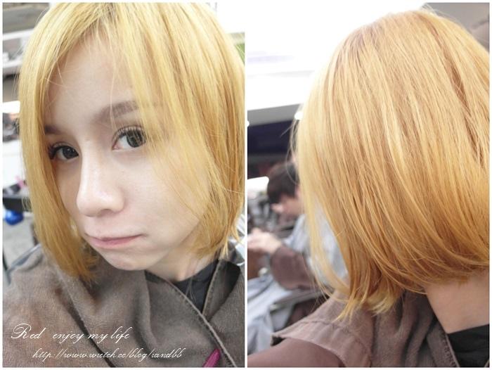 hair (11).jpg