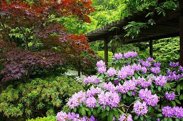 cleveland_botanic_garden1.jpg
