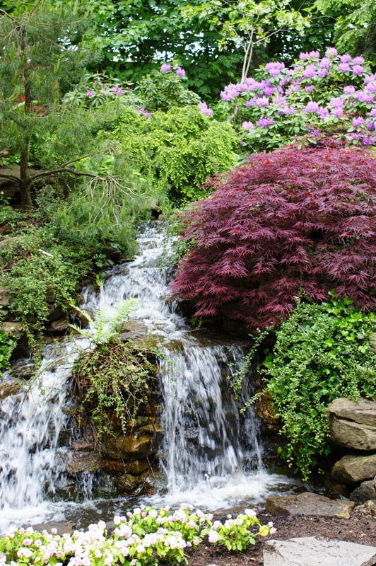 cleveland_botanical_waterfall.jpg
