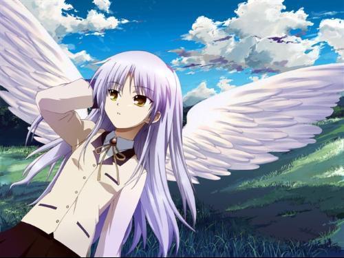 天使的心跳