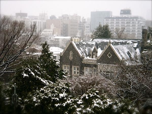 東京大雪1.JPG
