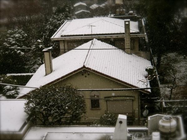 東京大雪2JPG.JPG
