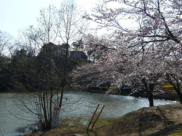 益子小湖美景