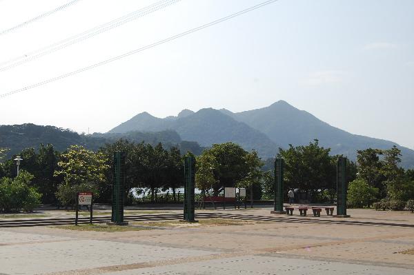 DSC_0040-01