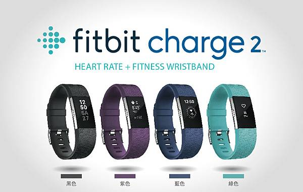 Fitbit Charge 2 色票.jpg