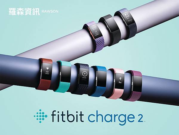 Fitbit-Charge_2_Product_Family_Photo_Bars.jpg