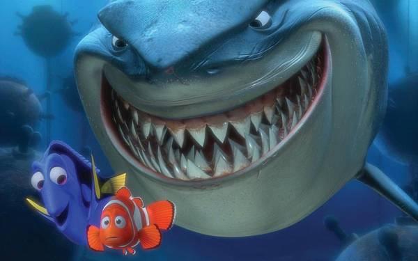鲨鱼2.jpg