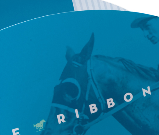 26.ribbon2.jpg