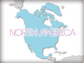 北美洲 (North America )