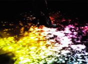 螢火光影 (Firefly)