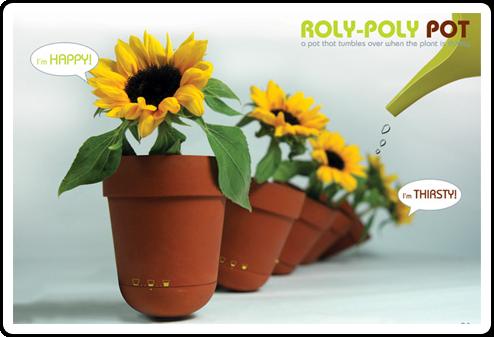 roly_pot.png