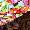 Umbrellas_4