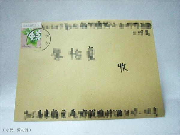 綠藻球5980