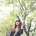 20110314_044.JPG