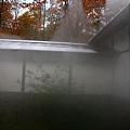 20101028_003.jpg