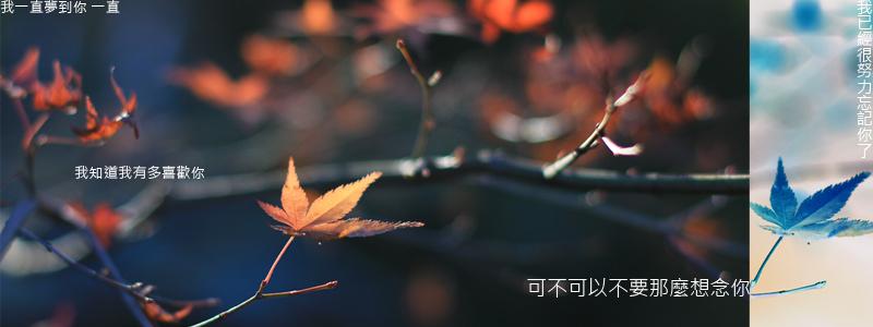 20120402_記事