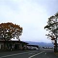 20101026_046.jpg