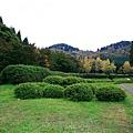 20101027_260.jpg