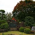20101027_262.jpg