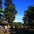 20101029_344.JPG