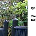 20101028_318.jpg