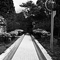 2010910_066.JPG