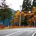 20101027_176.jpg